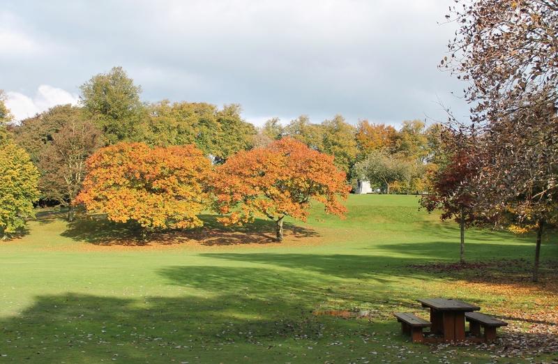 Pittencrieff Park, Dunfermline. Img_2235