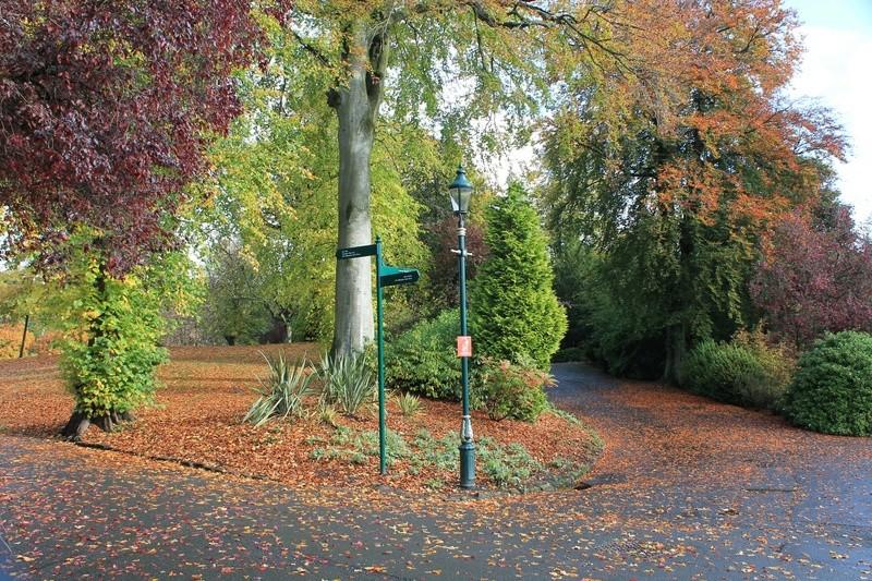 Pittencrieff Park, Dunfermline. Img_2238