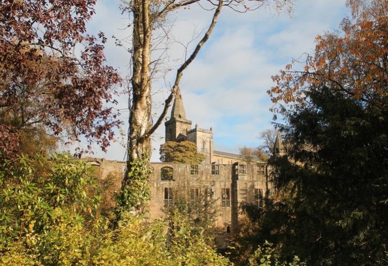 Dunfermline Glen today again... Img_2314