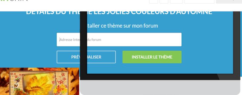 Problème pour installer un thème... Captur14