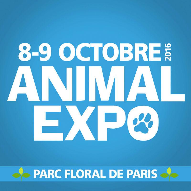 Animal Expo 2016 13343110