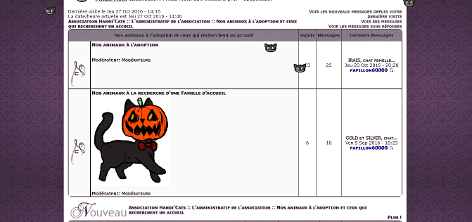Chasse aux Chat'lloween ! - Page 2 Chat-c10