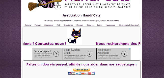 Chasse aux Chat'lloween ! - Page 2 Chat-d10