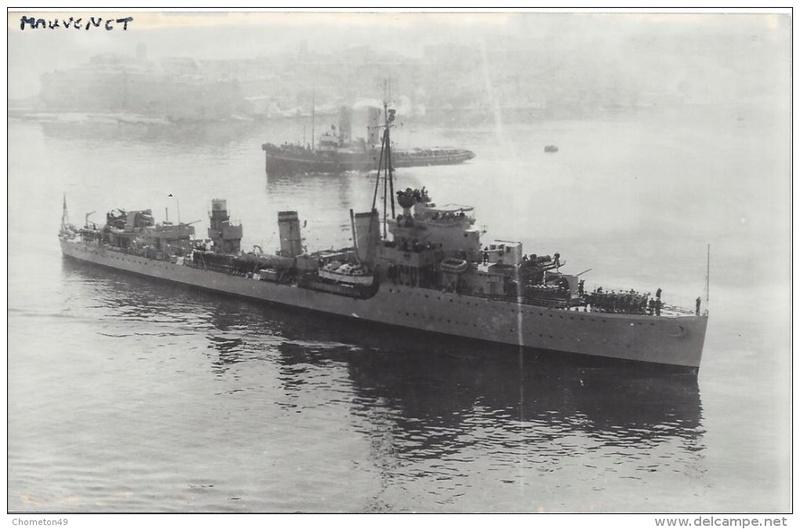 Marine turque Muaven10