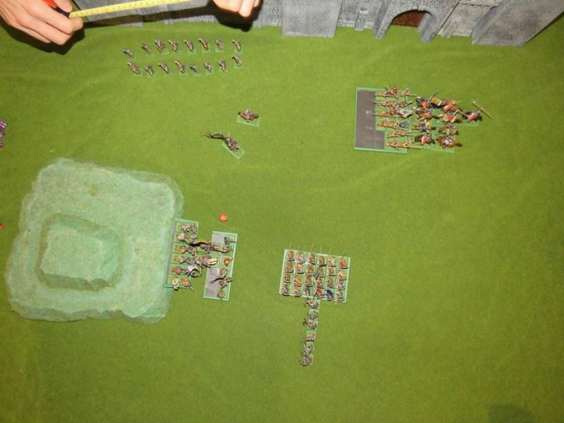 civitate - Bataille de Civitate Img_1158