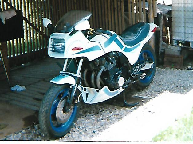 1100 ZX DOMINATOR BOXER BIKE  - Page 3 Gpzpap10