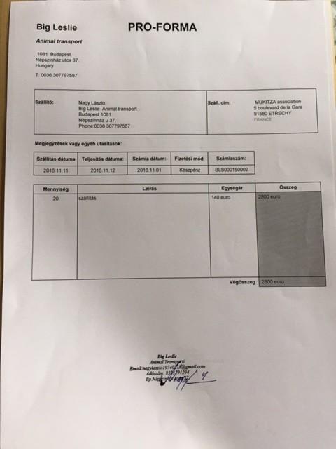 RAPATRIEMENT PAR CAMION CHIENS SERBES Arrivées des 6 et 11 NOVEMBRE Img_0711