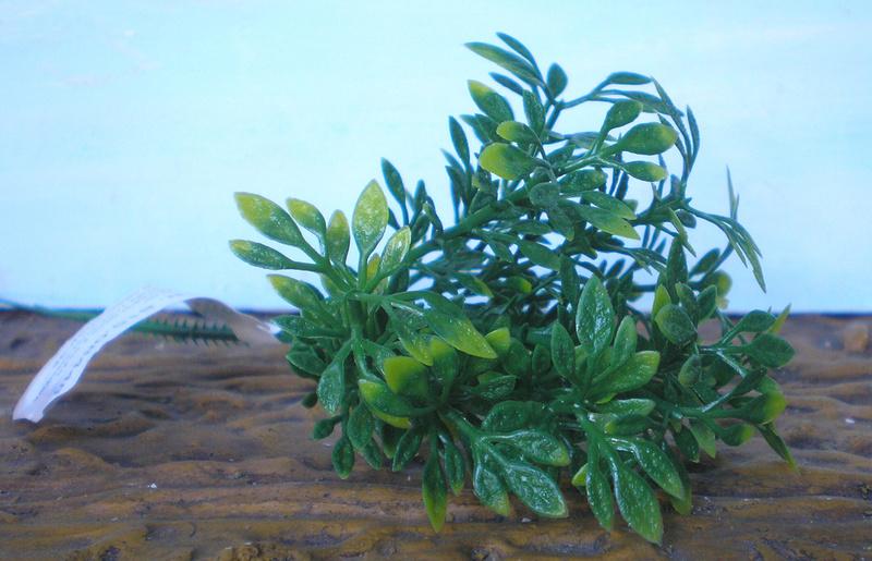 Preiswertes Material zur Pflanzengestaltung 70_mm_12