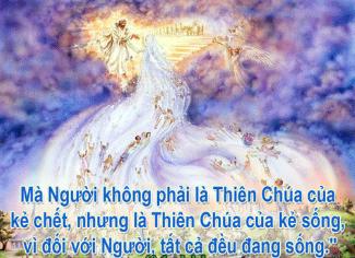 Chúa Nhật 32 Thường Niên Năm C - (06.11.2016) Suy Niệm Lời Chúa Cn-32-11