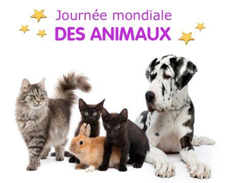 JOURNEE MONDIALE DES ANIMAUX MARDI 4 OCTOBRE 2016 Journe10