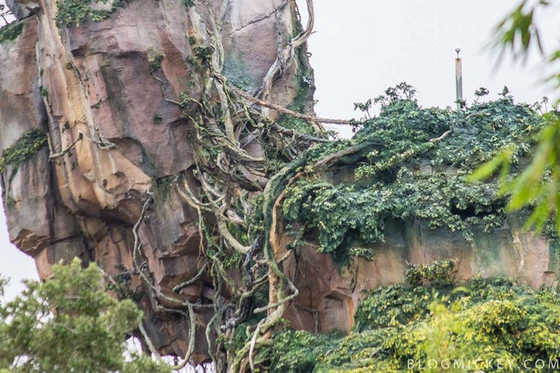 Avatar Land - Novità 2017 Animal Kingdom 01011