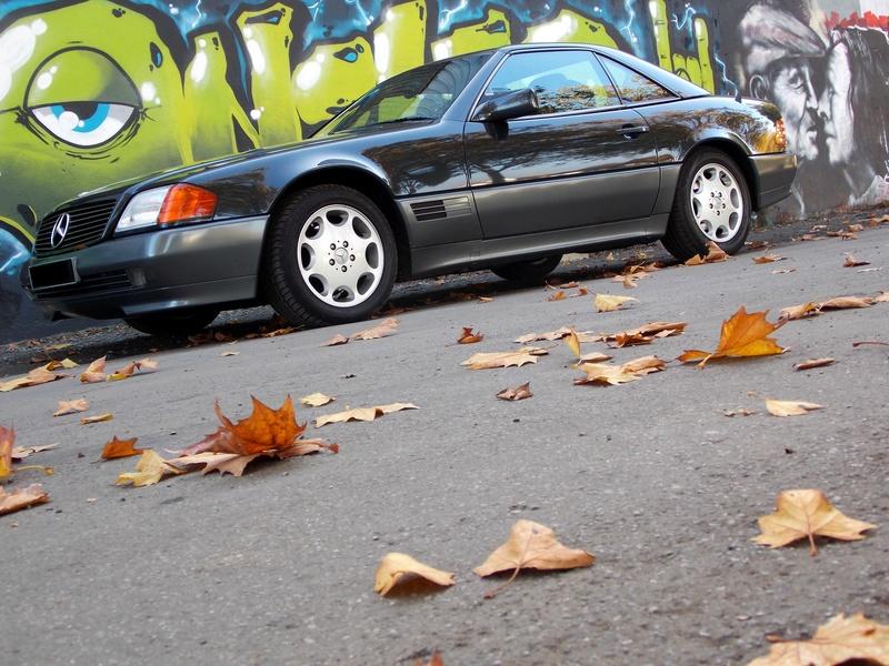 La W126 300 SEL ECE 1989 de Syl20 Dscn5116