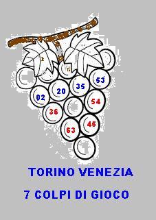 torino venezia  grappoli dal 7 maggio al 21 maggio Grappo10