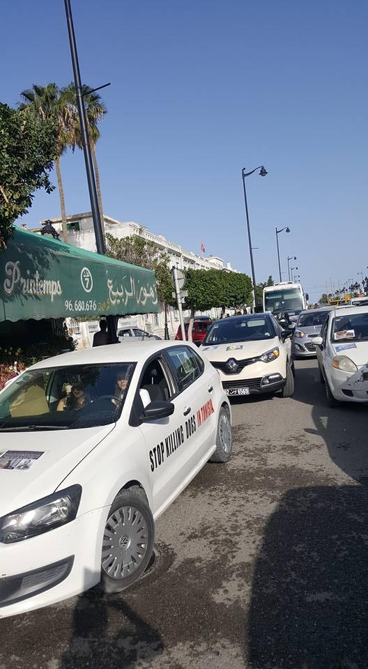 MASSACRES à CIEL OUVERT en Tunisie - Page 3 Manif_13