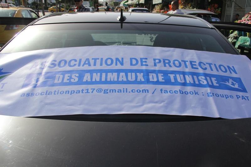 MASSACRES à CIEL OUVERT en Tunisie - Page 3 Manif_17
