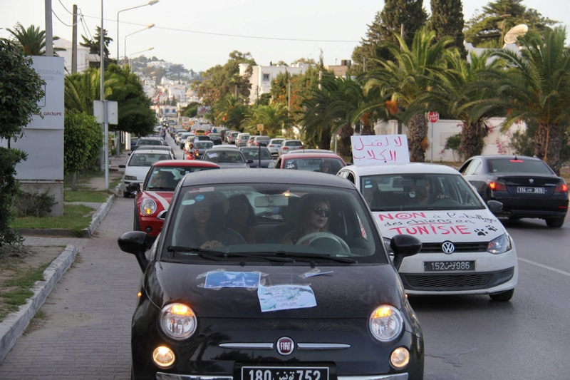 MASSACRES à CIEL OUVERT en Tunisie - Page 3 Manif_25