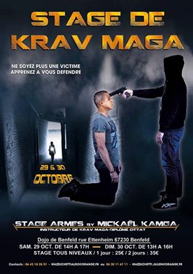 Stage de Krav Maga en Alsace. Stage_10
