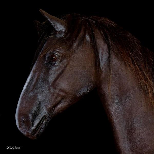 cheval de papier Img_5511