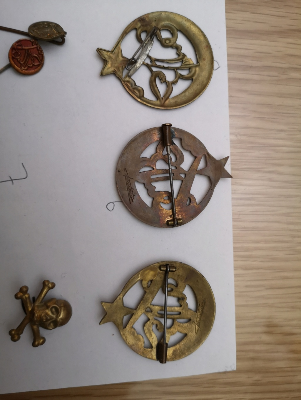 Insignes français 15793711