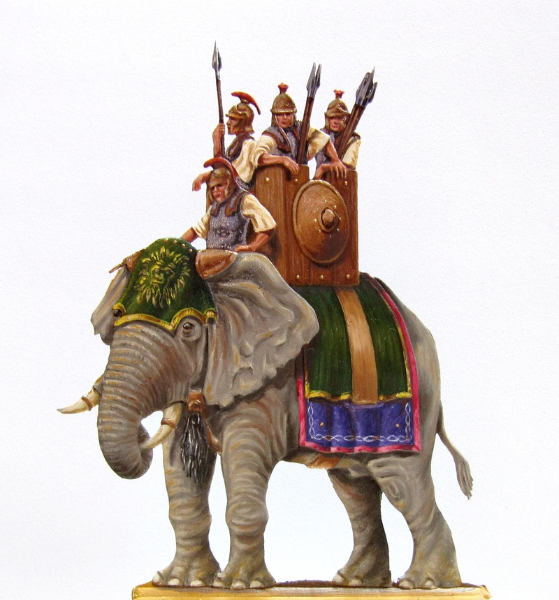 Elephant Carthaginois Elepha10