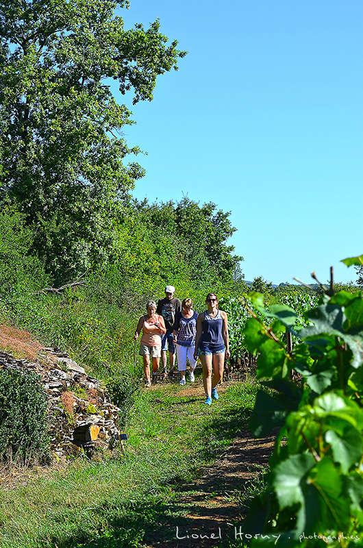 Sur le Chemin des Cadeules - Balade du 07 Août 2016 Dsc_0018
