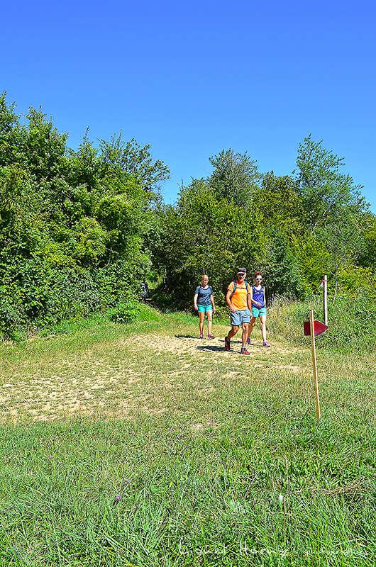 Sur le Chemin des Cadeules - Balade du 07 Août 2016 Dsc_0027