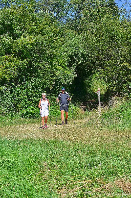 Sur le Chemin des Cadeules - Balade du 07 Août 2016 Dsc_0028