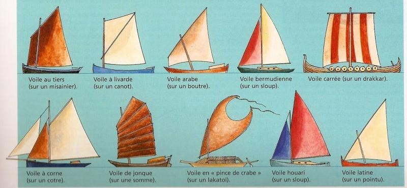 Homo Nauticus - Page 2 Voile_11