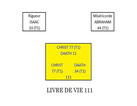 Arbre de vie - Le pilier de l'équilibre Sans_t15