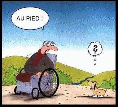 Humour en images - Page 3 Au-pie10