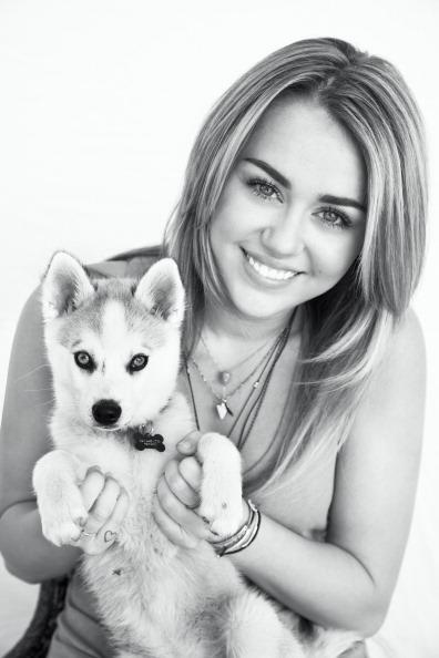 Miley Cyrus Fotos  00115