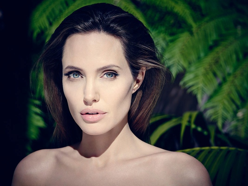 Angelina Jolie Fotos 2014-032