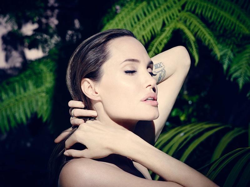 Angelina Jolie Fotos 2014-034