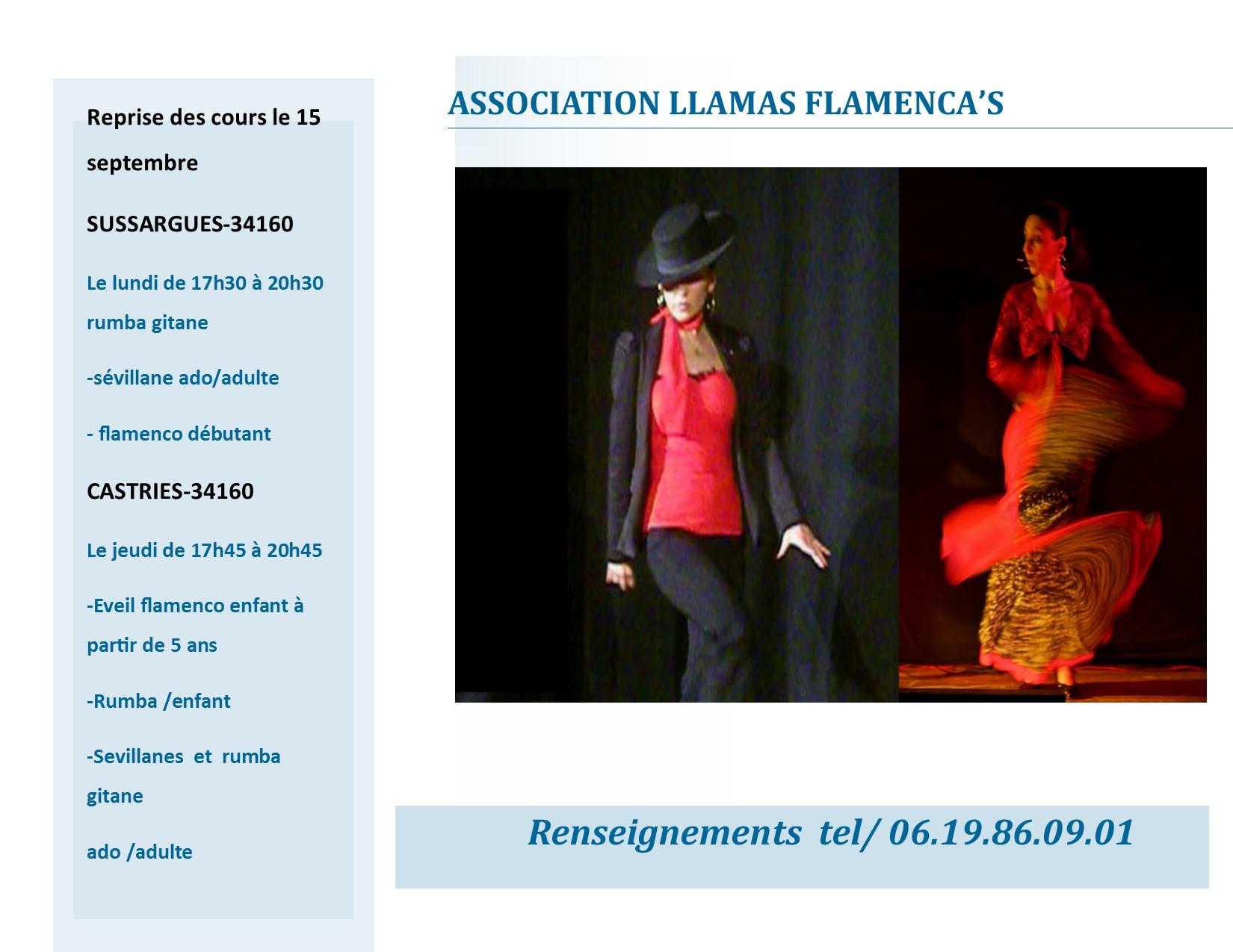 cours de danse rumba gitane entre nimes et montpellier Compos11