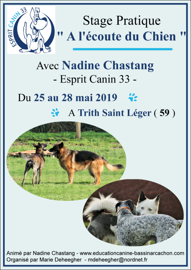 Esprit Canin 33 - Nadine Chastang - Page 27 Affich12