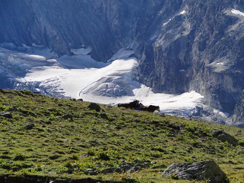 Pralognan-la-Vanoise – Col de Chavière. Dsc04830