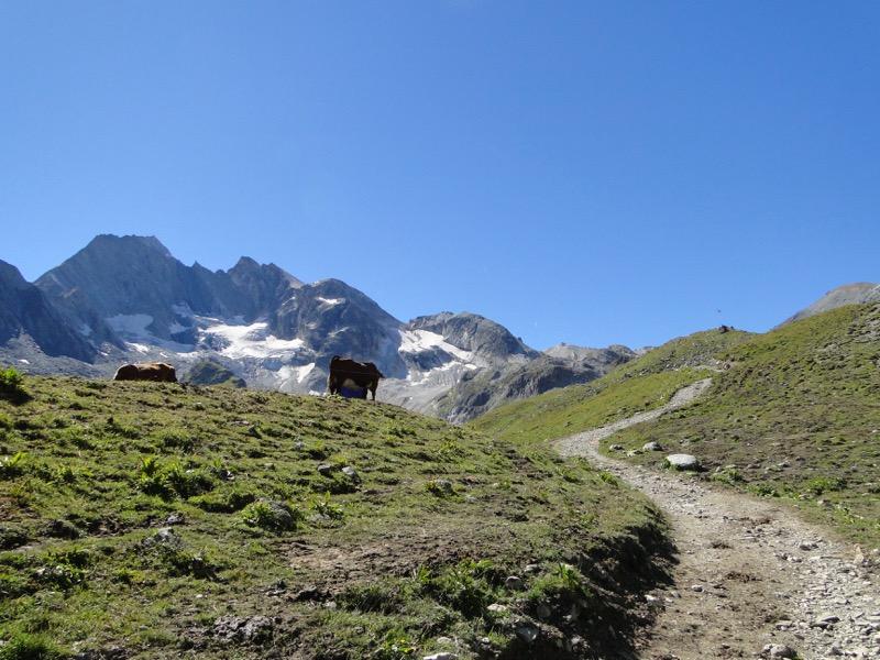 Pralognan-la-Vanoise – Col de Chavière. Dsc04832
