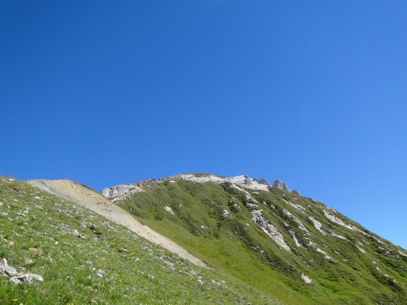 Pralognan - Petit Mont Blanc Dsc04930