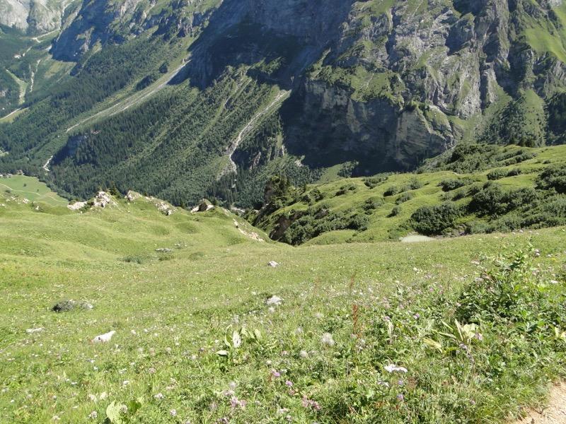 Pralognan - Petit Mont Blanc Dsc04952
