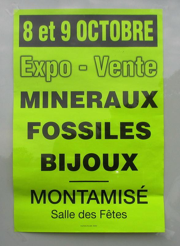 Montamisé - Vienne 8 et 9 octobre  2016 Img_2110