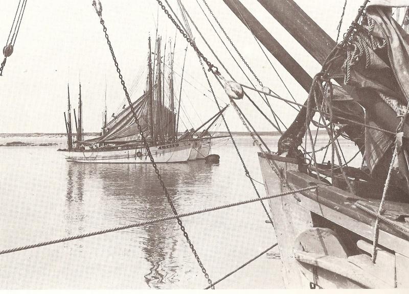 La Marie Jeanne Thonier Billing boats au 1/50 - Page 3 Galoch10