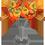 Arbre à Kumquat Prawnk10