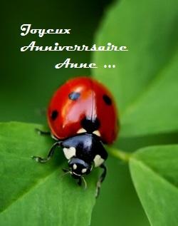 Happy birthday ANNE Ladybu10