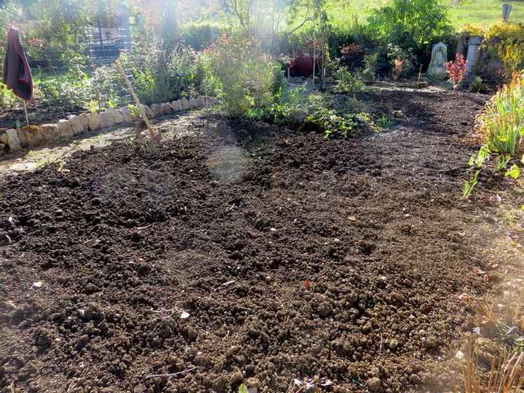 On bosse au jardin !!! - Page 6 02010