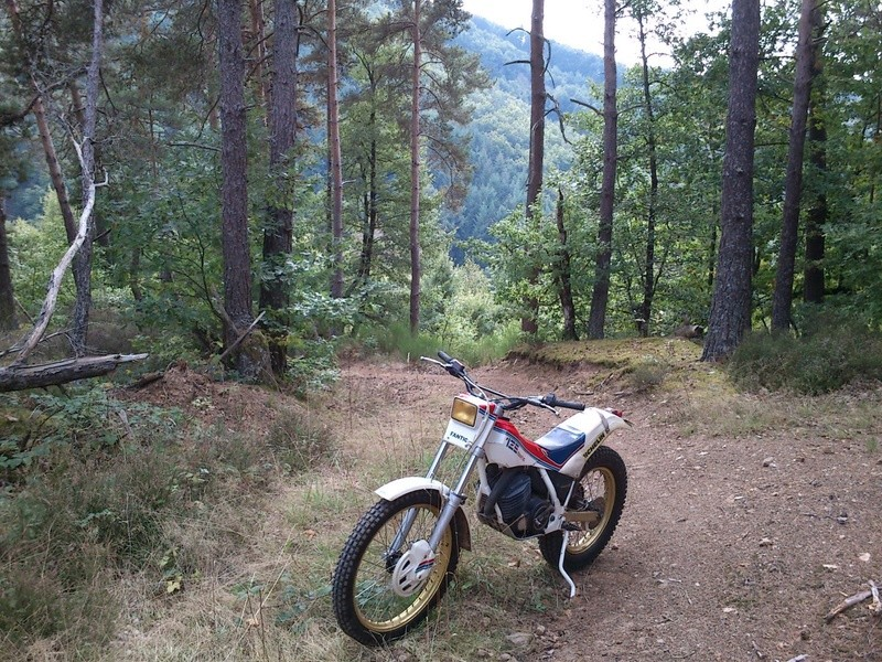 Galerie motos des fofoteurs * Dsc_4713