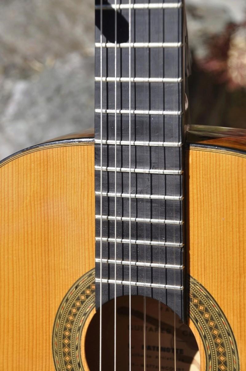 Sauvetage d'une guitare - Page 2 _dsc0747