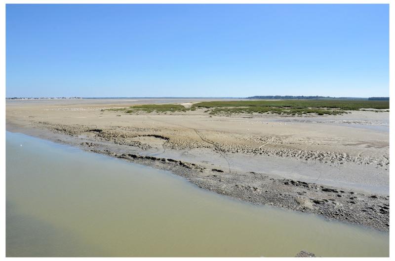 Photos de mes dernières vacances, la côte d'Opale  Dsc_3313