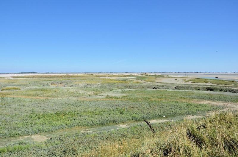 Photos de mes dernières vacances, la côte d'Opale  Dsc_3315