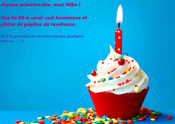 Joyeux anniversaire Nikolune ! Gyteau10
