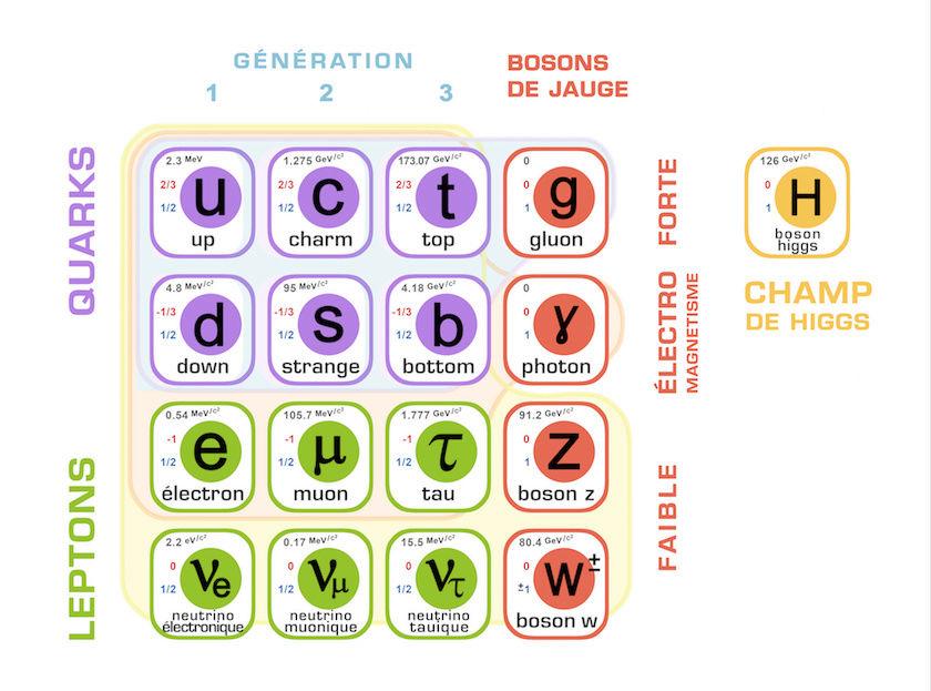 MODÈLE STANDARD  -   PARTICULES   /   PHYSIQUE   /  ÉLECTRON  /  QUARKS   /   Leptons   /   Bosons Modele10